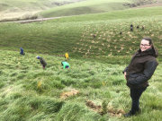 Year 7/8 - Yellow Eyed Penguin Trust Planting Day