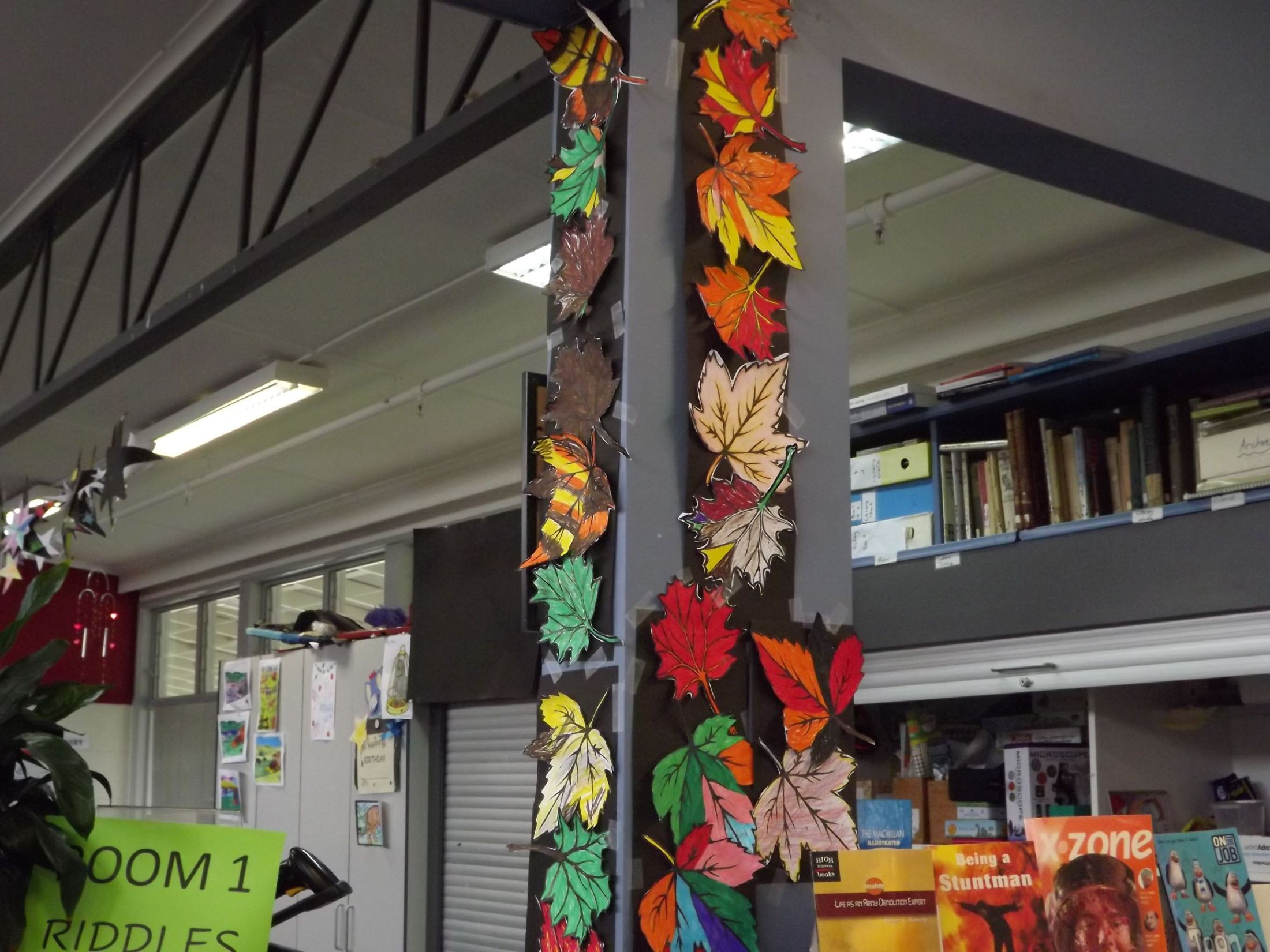Autumn In Library